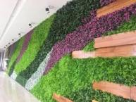 Sardar Landscaping & Grass Cutting.